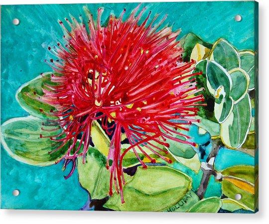 Lehua Blossom Acrylic Print