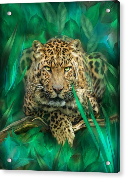 Leopard - Spirit Of Empowerment Acrylic Print