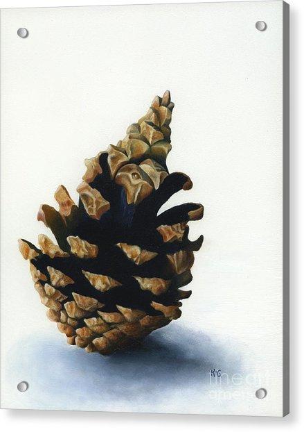 Lone Pinecone Acrylic Print