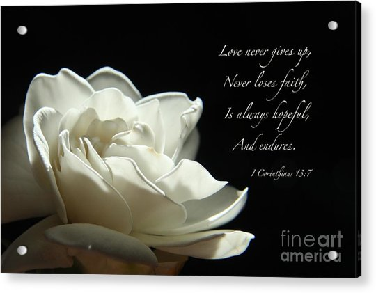 Love Never Gives Up Acrylic Print