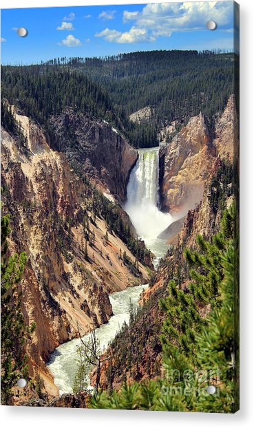 Acrylic Print featuring the photograph Lower Falls Of Yellowstone by Jemmy Archer