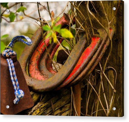 Lucky Horseshoes Acrylic Print