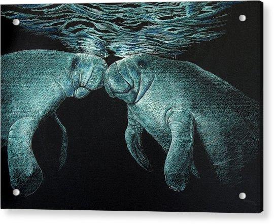 Manatees Acrylic Print