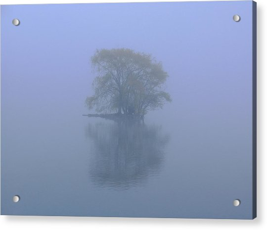 Misty Morning At Jamaica Pond Acrylic Print