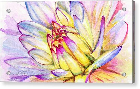 Morning Flower Acrylic Print