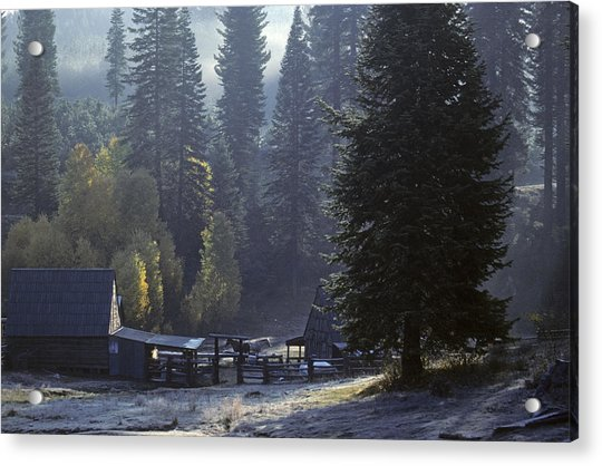 Acrylic Print featuring the photograph Morning Frost At Dawn by David Bailey