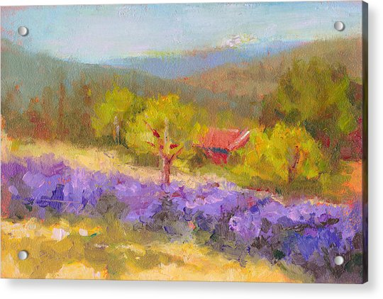 Acrylic Print featuring the painting Mountainside Lavender   by Talya Johnson