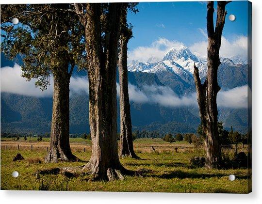 Mt Cook Through Trees Acrylic Print