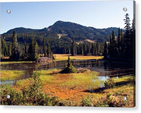 Mt Washington Autumn Acrylic Print