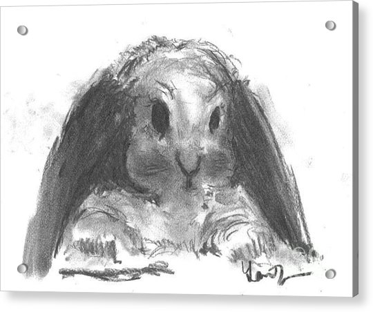 Acrylic Print featuring the drawing My Baby Bunny by Laurie Lundquist