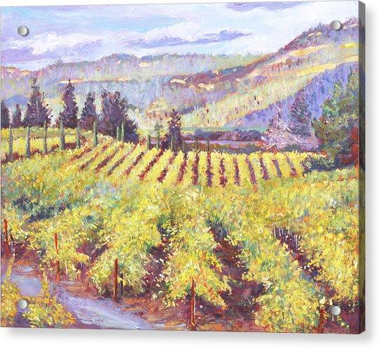 Napa Valley Vineyards Acrylic Print