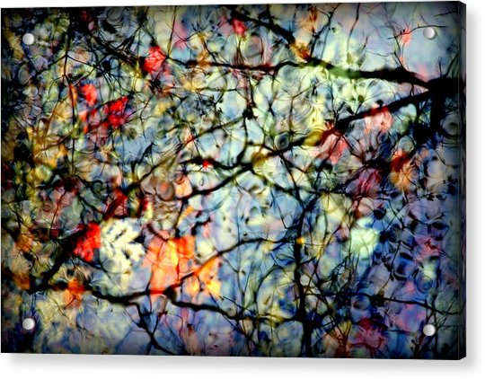 Natures Stained Glass Acrylic Print