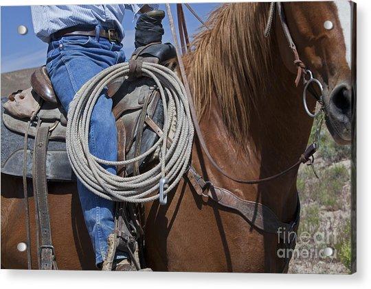 Nevada Cattle Ranch Acrylic Print