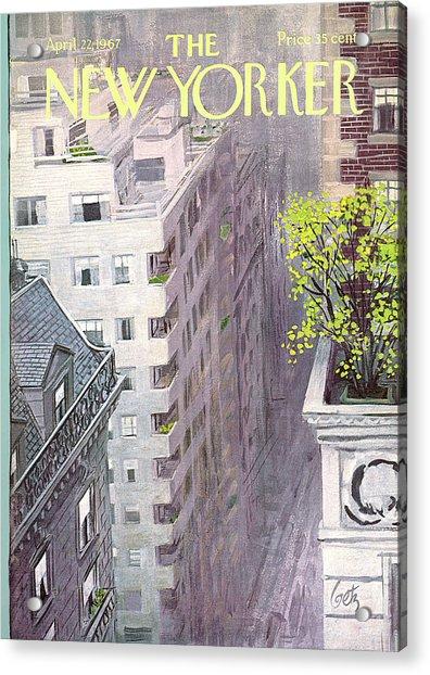 New Yorker April 22nd, 1967 Acrylic Print