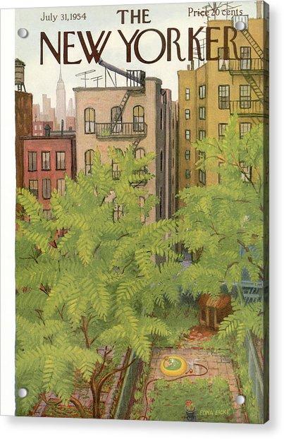 New Yorker July 31st, 1954 Acrylic Print
