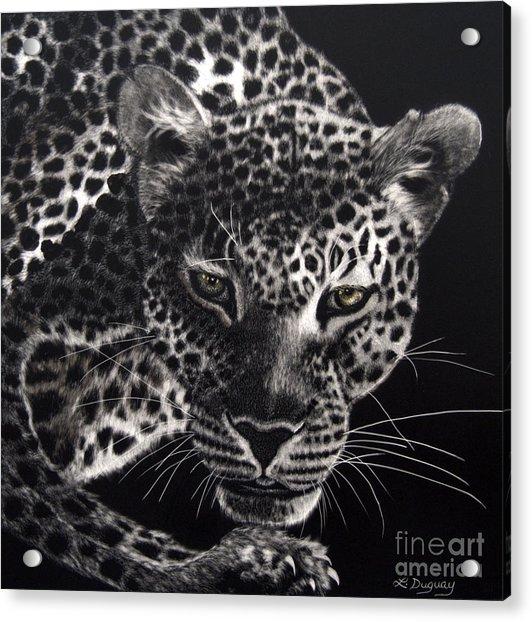 Night Prowler Acrylic Print