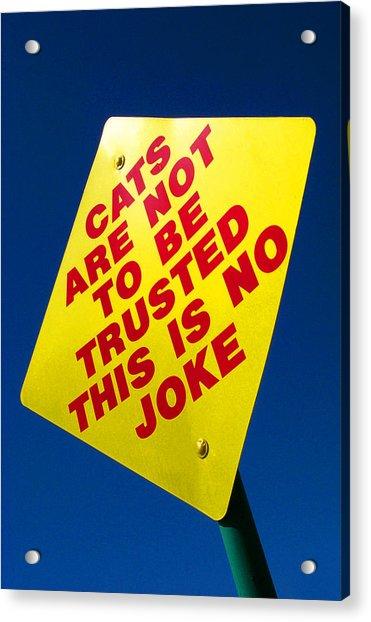 No Joke Acrylic Print