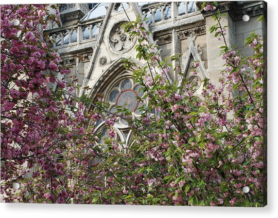 Notre Dame In April Acrylic Print
