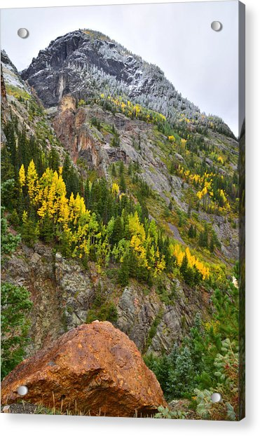 Ouray Canyon Fall Color Acrylic Print