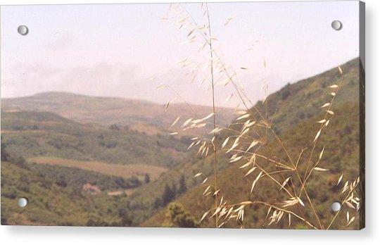 Acrylic Print featuring the photograph Overlooking The Valley by Cynthia Marcopulos