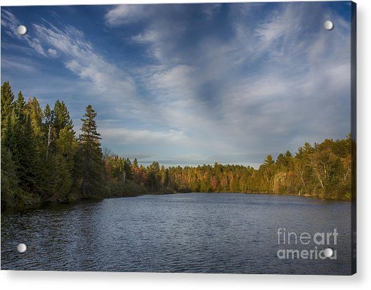 Paint River - Autumn Acrylic Print