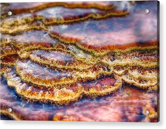 Pancakes Hot Springs Acrylic Print