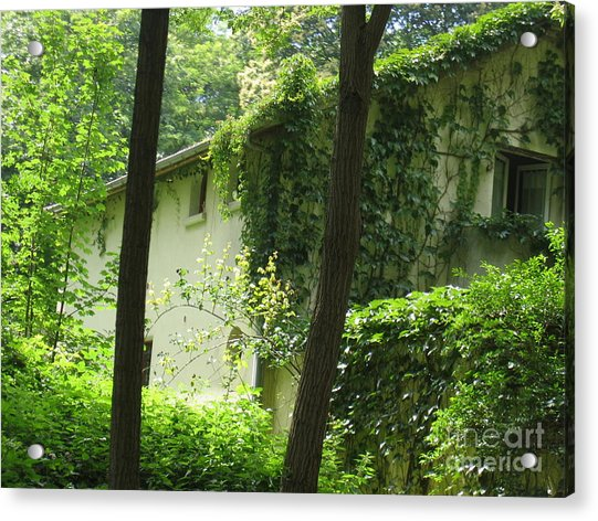 Paris - Green House Acrylic Print