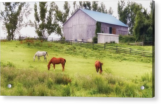 Acrylic Print featuring the photograph Pasture by Garvin Hunter