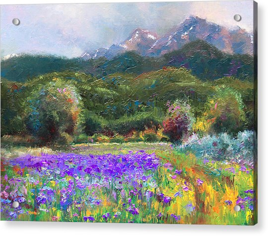 Acrylic Print featuring the painting Path To Nowhere by Talya Johnson