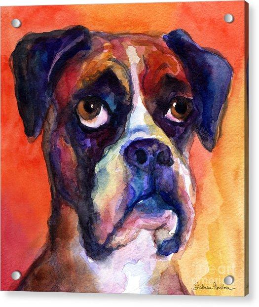 pensive Boxer Dog pop art painting Acrylic Print