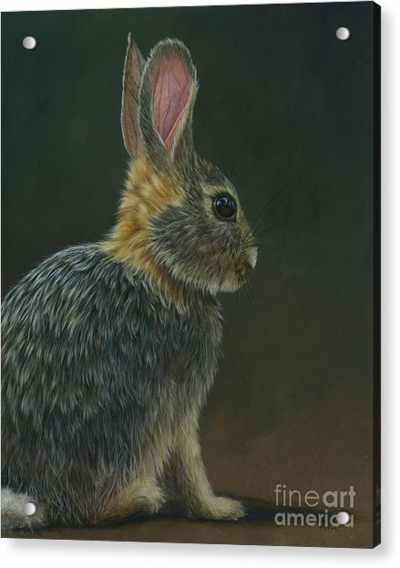 Peter Paul Or Mary Acrylic Print