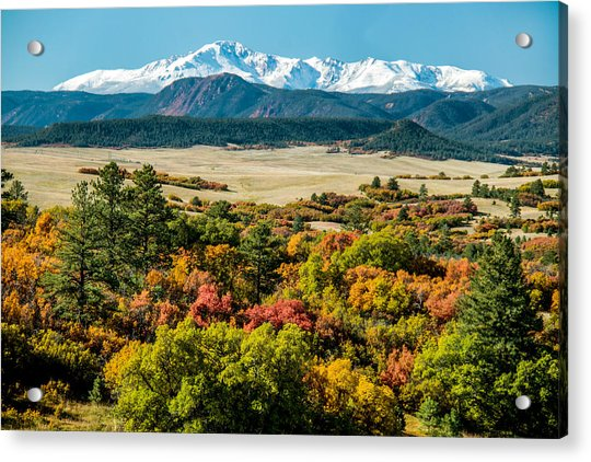 Pikes Peak Over Scrub Oak Acrylic Print