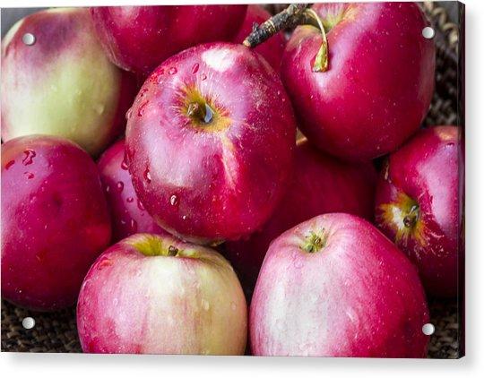 Pile Of Apples Acrylic Print