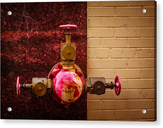 Pink And Rusted Acrylic Print