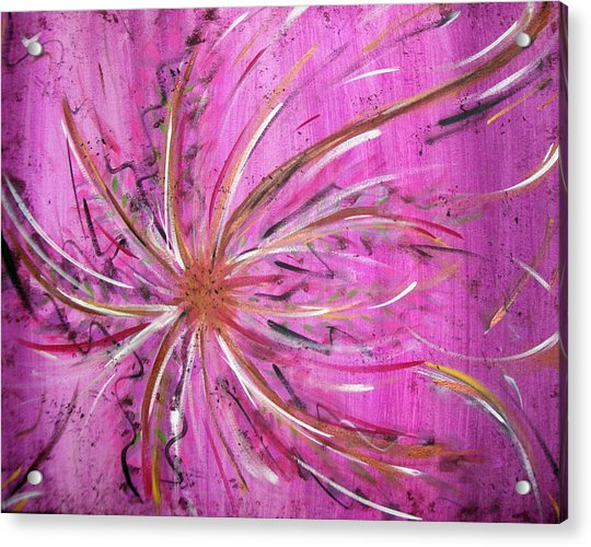 Pink Whisp Acrylic Print