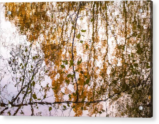 Pond Reflections #3 Acrylic Print