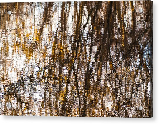 Pond Reflections #6 Acrylic Print