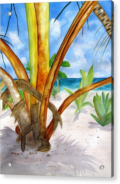 Punta Cana Beach Palm Acrylic Print