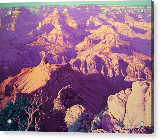 Purple Splendor Acrylic Print