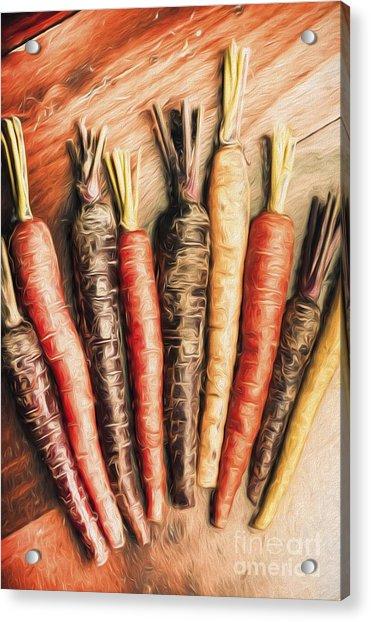 Rainbow Carrots. Vintage Cooking Illustration  Acrylic Print
