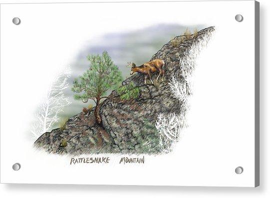 Rattlesnake Mountain Acrylic Print