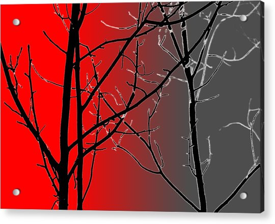 Acrylic Print featuring the photograph Red And Gray by Cynthia Guinn