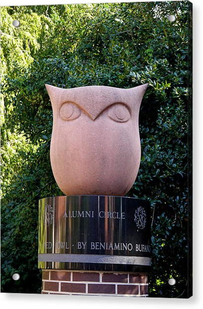 Red Owl At Temple Acrylic Print