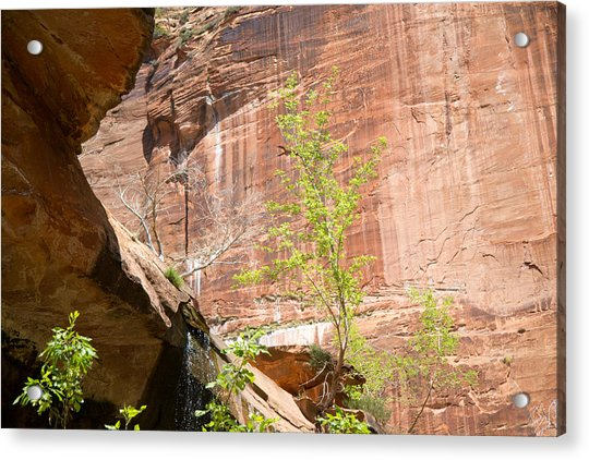 Red Rock With Waterfall Acrylic Print