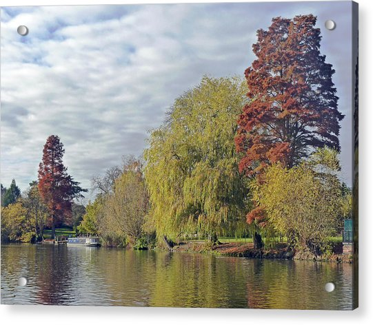 River Avon In Autumn Acrylic Print