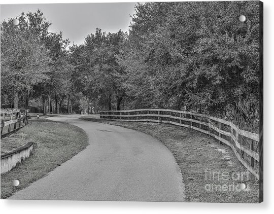 Road Path Acrylic Print by Mina Isaac