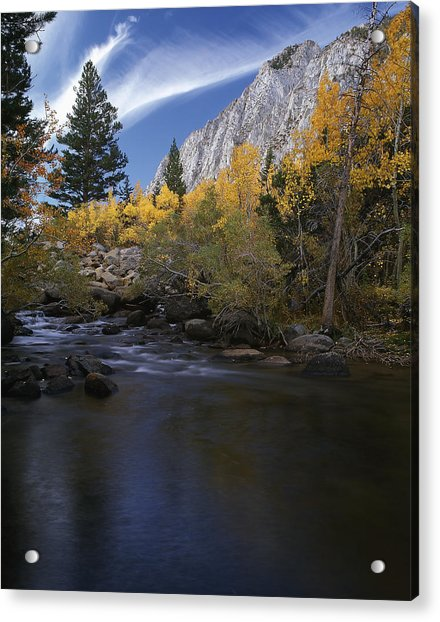 Rock Creek Canyon Gold Acrylic Print