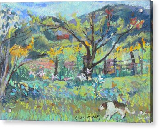 Ruby Runs Through Under Mountain Farm Acrylic Print
