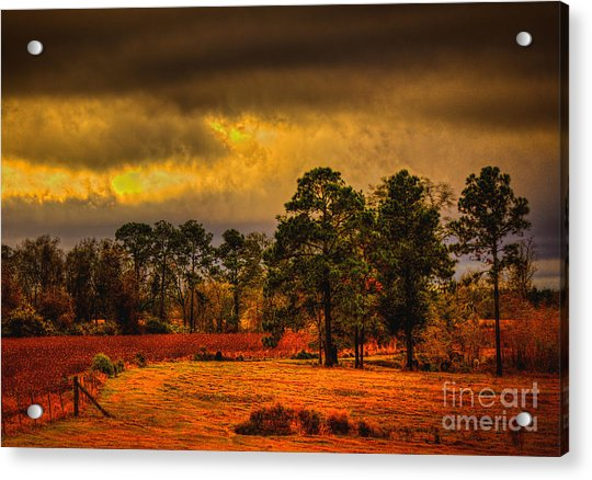 Rustic Pasture Acrylic Print