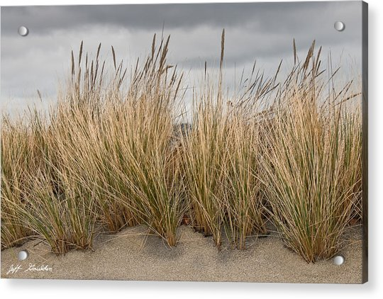 Sea Grass And Sand Acrylic Print